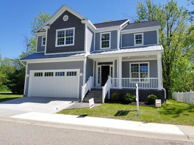 South Haven MI Single Family Home For Sale: $624,000
