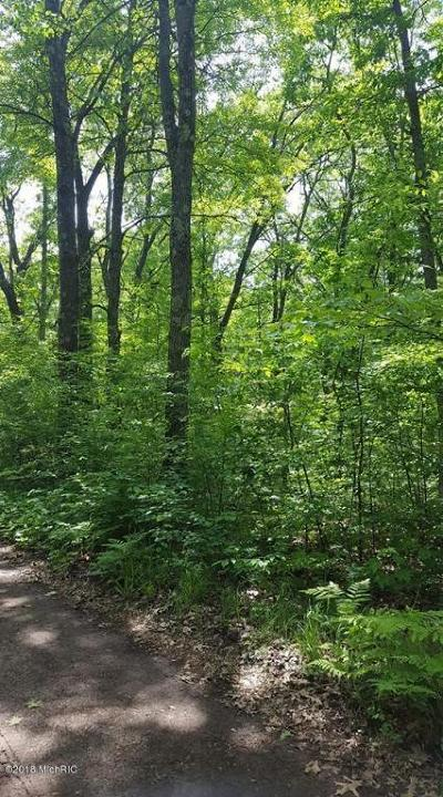 Newaygo County Residential Lots & Land For Sale: 27th Avenue