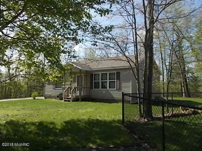 Newaygo Single Family Home For Sale: 6088 Pointview Court