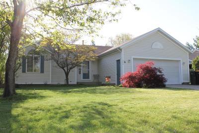 Single Family Home For Sale: 2873 Alson Drive NE