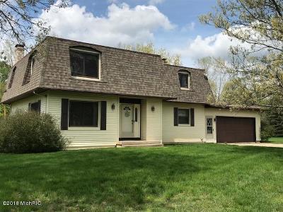 Belmont MI Single Family Home For Sale: $299,900