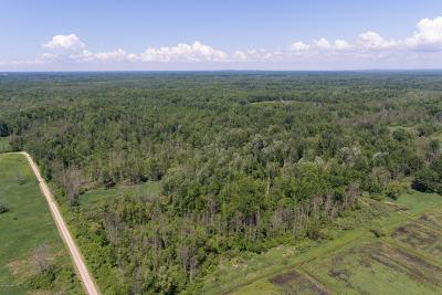 Berrien County, Cass County, Van Buren County Residential Lots & Land For Sale: 100 Acres 42nd Street