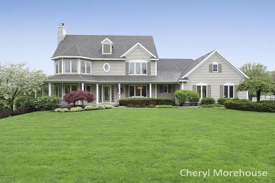 Caledonia Single Family Home For Sale: 10390 Kalamazoo Avenue SE