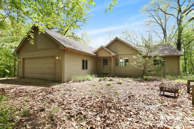 Allegan Single Family Home For Sale: 3760 Damal Drive