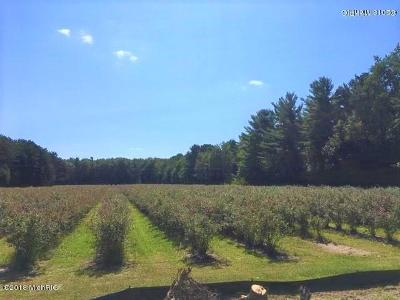Grand Haven Residential Lots & Land For Sale: 17018 Buchanan Street