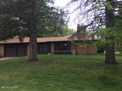 Grand Rapids Single Family Home For Sale: 3441 Newcastle Drive SE