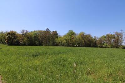 Berrien County Residential Lots & Land For Sale: 64.5 Paw Paw Lake Road