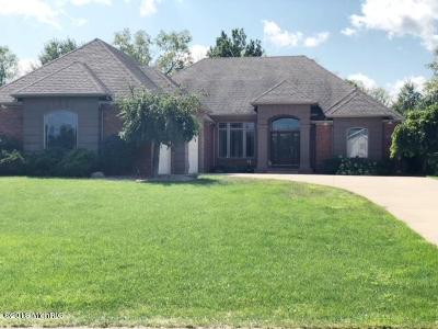 Berrien County Single Family Home For Sale: 24 Longmeadow Drive