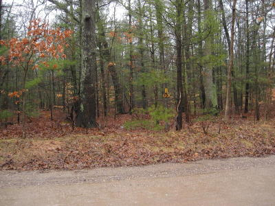 Muskegon Residential Lots & Land For Sale: Strand Road