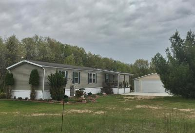 Mecosta County Single Family Home For Sale: 3856 Wood Avenue
