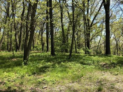 Berrien County Residential Lots & Land For Sale: 11048 Riverview Drive