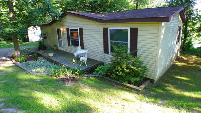 Delton Single Family Home For Sale: 8500 Lammers Road
