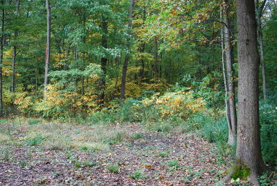 Berrien County Residential Lots & Land For Sale: Auld Way Road