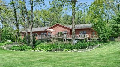 Belding Single Family Home For Sale: 10847 Alamoe Drive