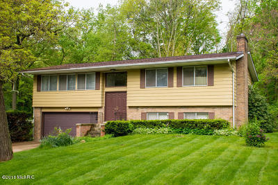 Berrien County Single Family Home For Sale: 308 Carey Mission Drive