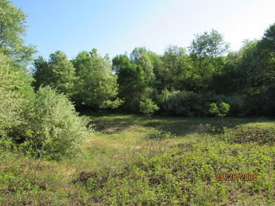 Berrien County Residential Lots & Land For Sale: Nichols Road