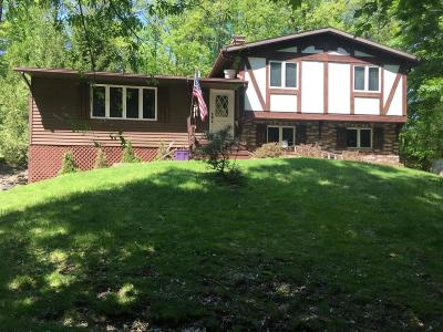 Rockford Single Family Home For Sale: 7575 Jericho Avenue NE