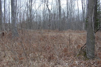 Ogemaw County Residential Lots & Land For Sale: Gillings Road
