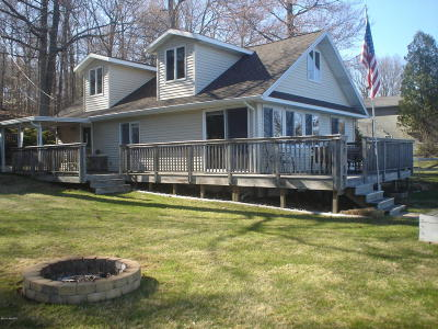Newaygo County Single Family Home For Sale: 9264 Redwood Drive