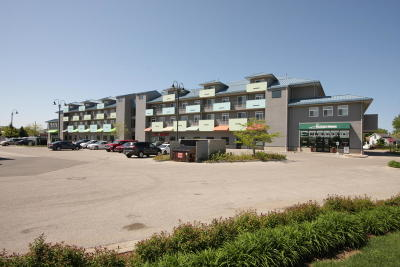 Grand Haven, Spring Lake Condo/Townhouse For Sale: 530 Miller Drive #204