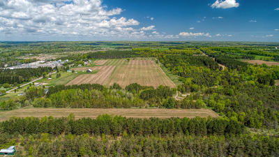 Benzie County, Charlevoix County, Clare County, Emmet County, Grand Traverse County, Kalkaska County, Lake County, Leelanau County, Manistee County, Mason County, Missaukee County, Osceola County, Roscommon County, Wexford County Residential Lots & Land For Sale: 00 165th Avenue