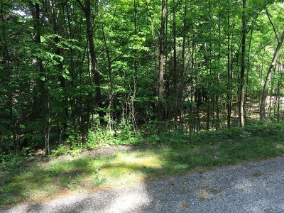 Holland, West Olive Residential Lots & Land For Sale: 4705 Forest Ridge Drive #Lot 18