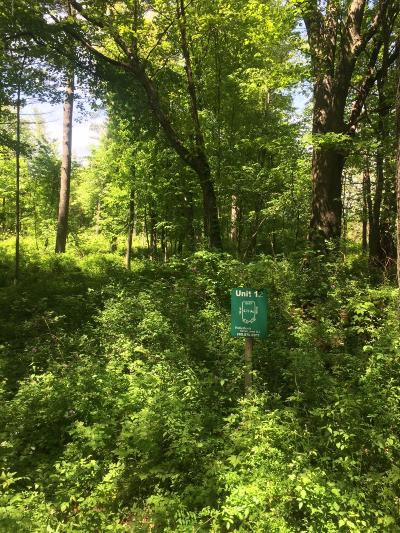 Cass County Residential Lots & Land For Sale: 12 Misty Pines