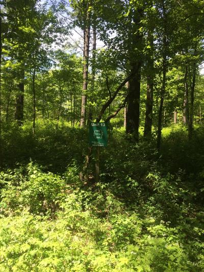 Cass County Residential Lots & Land For Sale: 13 Misty Pines