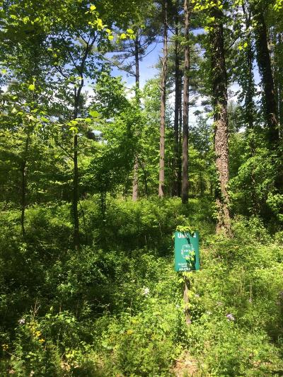 Cass County Residential Lots & Land For Sale: 14 Misty Pines