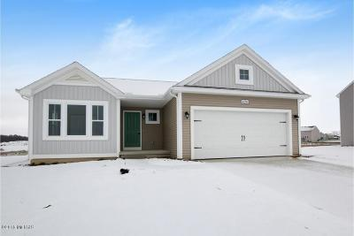 Hudsonville Single Family Home For Sale: 4256 Shetland Drive