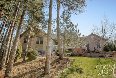 Grand Rapids Single Family Home For Sale: 3392 Meadowood Trail Drive SE