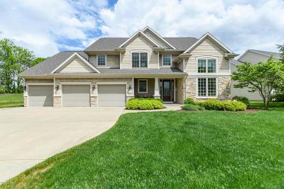 Kalamazoo County Single Family Home For Sale: 6285 McGillicuddy Lane #32