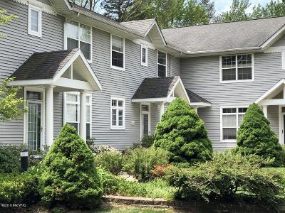 Douglas Condo/Townhouse For Sale: 110 E Washington Street