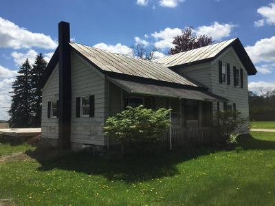 Lowell Single Family Home For Sale: 9885 Peck Lake Road