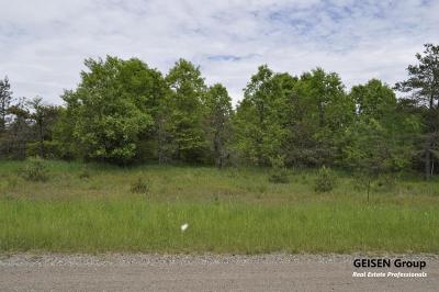 Belding Residential Lots & Land For Sale: 4 Coyote Trail