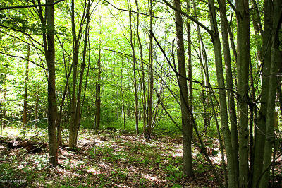 Newaygo County Residential Lots & Land For Sale: Marclay Street
