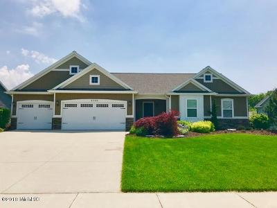 Hudsonville Single Family Home For Sale: 4140 Unity Drive