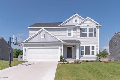 Van Buren County Single Family Home For Sale: 58482 Silvergrass Avenue
