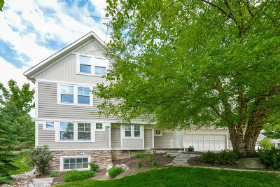 Jenison Single Family Home For Sale: 3047 Hunters Drive