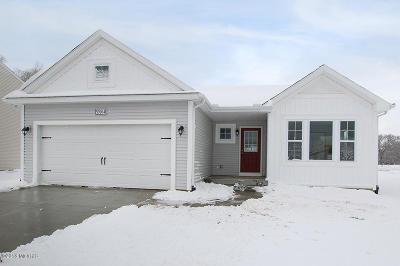 Van Buren County Single Family Home For Sale: 59204 Silvergrass