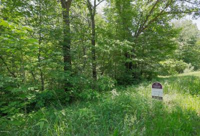 Plainwell Residential Lots & Land For Sale: Marsh Road