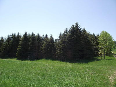 Manistee County Residential Lots & Land For Sale: Chief Road