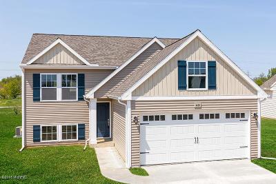 Hudsonville Single Family Home For Sale: 6685 Van Dam Avenue