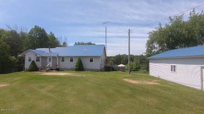 Osceola County Single Family Home For Sale: 3481 5 Mile Road