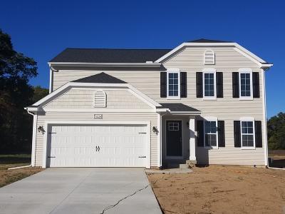 Van Buren County Single Family Home For Sale: 59487 Silvergrass Drive