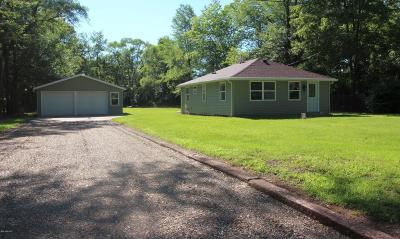 Niles MI Single Family Home Active Backup: $93,500