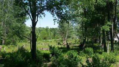 Caledonia Residential Lots & Land For Sale: 8350 Thornapple River Drive SE
