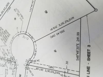 Big Rapids Residential Lots & Land For Sale: 41 Tree Top Ridge