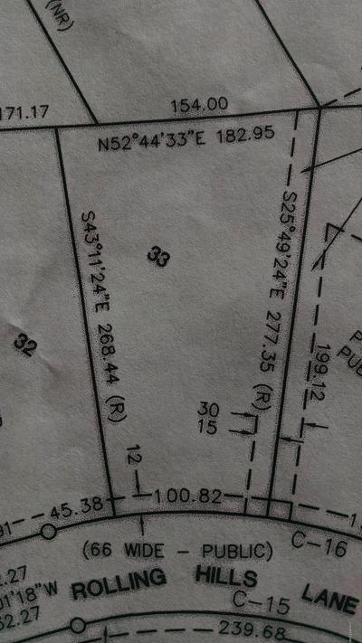 Big Rapids Residential Lots & Land For Sale: 33 Rolling Hills Lane