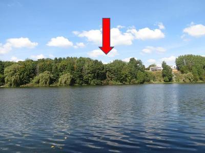 Oceana County Residential Lots & Land For Sale: Karen Street